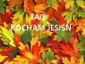 Jestem Tynka: Tydzień z Tynką#3-Kocham Jesień TAG