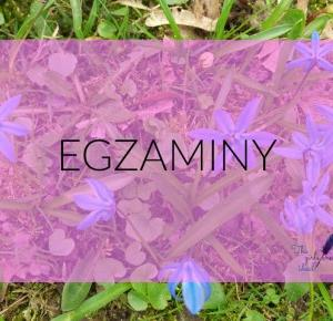 I PO EGZAMINACH- CZYLI JAK ZEPSUĆ 3 LATA W 3 DNI - The girls aren't ideal