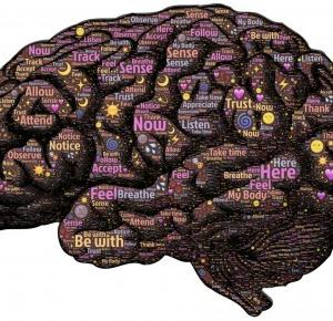 Mózg - wiesz o sobie nic