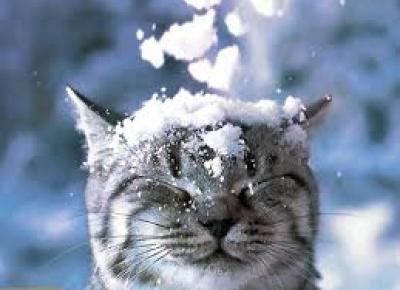 Winter time - czyli inspiracje na zimowe zdjęcia!
