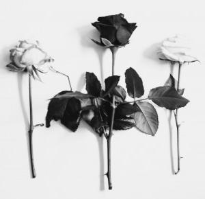 I will breathe once more | Lovett Lov