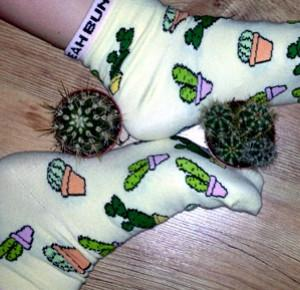 niepospieszny. : Cactusowo