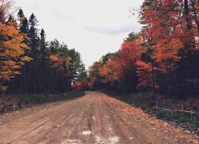Oda do jesieni | Wiktoria Jędroszkowiak