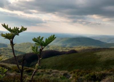 W podróży do chmur : W poszukiwaniu Bieszczadzkich Aniołów