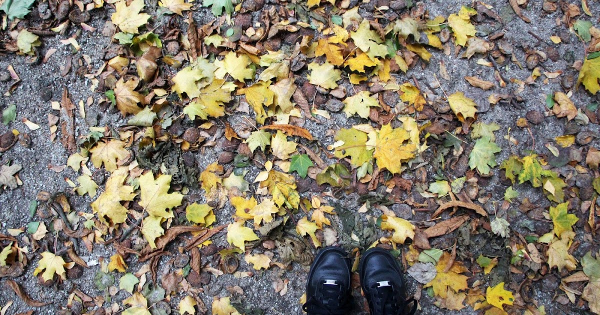 love yourself: fall is here!