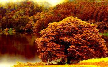 Wiktoria Blog: ♥ Za co kocham jesień? ♥