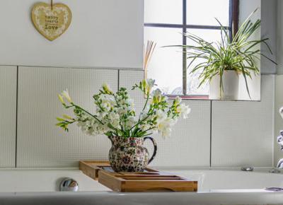 Rośliny do łazienki, jak zrobić las w słoiku? Sprawdź idealne rośliny! - Zlota7