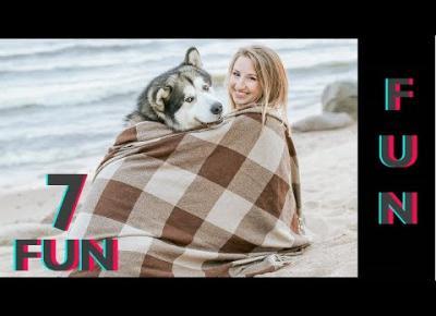 Śmieszne koty i psy zabawne zwierzęta Padniesz ze śmiechu 7Fun #8