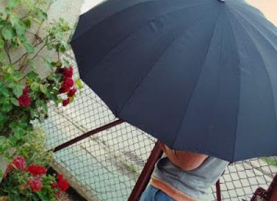 Zopiniuj - Robimy to, co lubimy: Pomocnik w deszczową pogodę