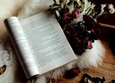 5 bestsellerów, które warto przeczytać