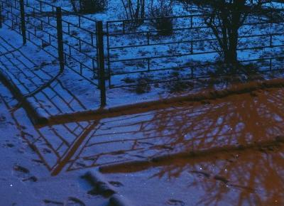 Życiownik #3: spóźnione podsumowanie roku i w końcu zima! – Życiologia